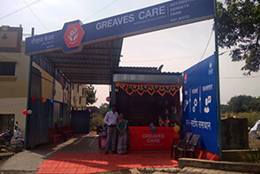 greaves care